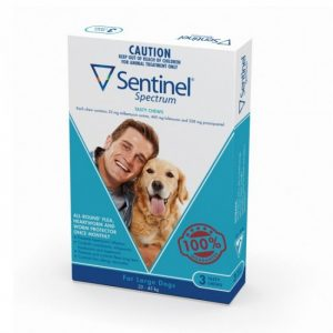Sentinel Spectrum Tasty Chew Large Dogs - Revolution for Very Small Dogs - The Best Pet Shop Australia