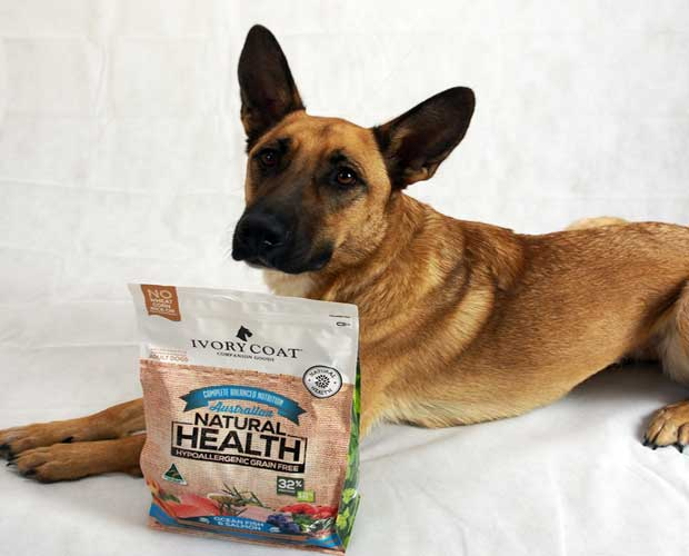 Brand of Dog Food